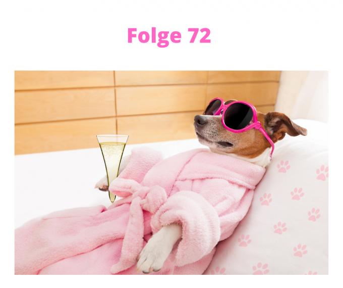 Folge-72-cool-bleiben-zahlt-sich-aus