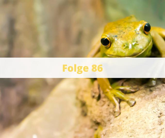 Folge 86 - Frosch Frühstück